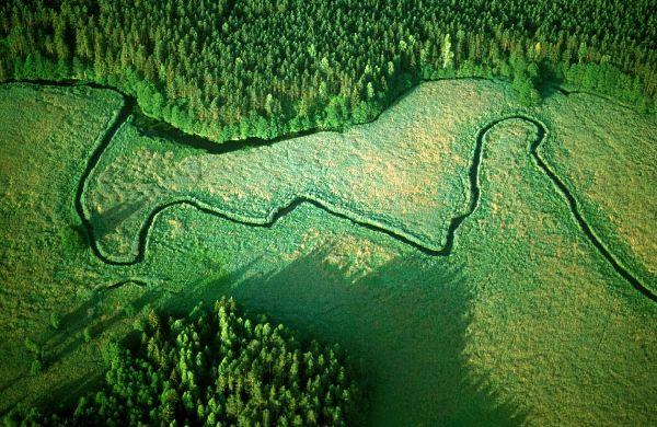 Tajemnice rzek – Rospuda