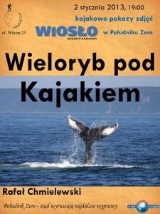 Wieloryb pod kajakiem