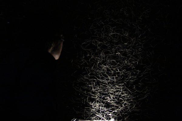 Jętki nocą w pobliżu ujścia Grabi (fot. Tomasz Andrzej Krajewski)